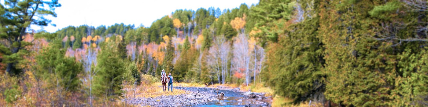 Family walking in river valley